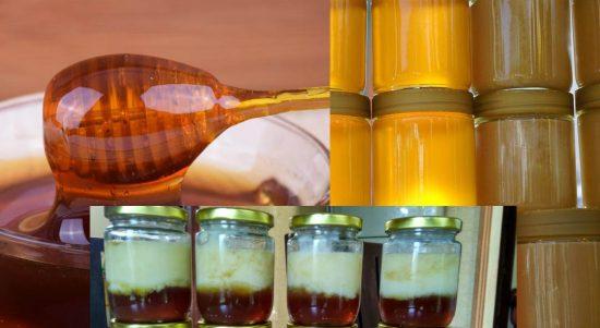 lebahratu.com, Situs Informasi Madu Murni Royal Jelly Propolis Bee Pollen dan Bee Proma