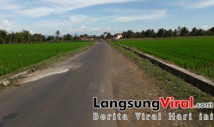 Potensi Wisata Sawah Sangat Besar di Kampung Leuwiseeng Sukaherang Singaparna Tasik